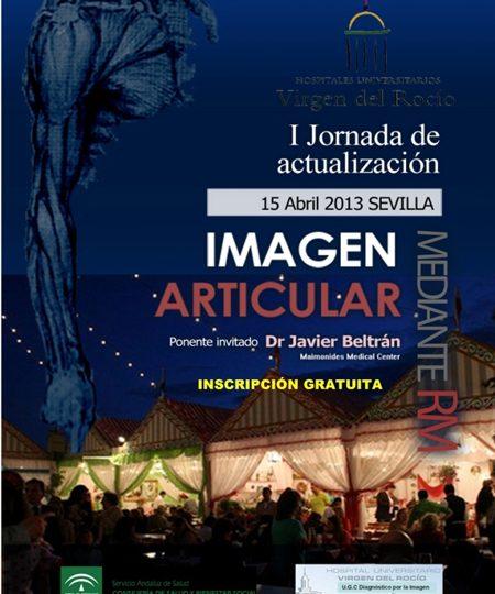 Crónica Jornadas de Imagen Articular en Sevilla