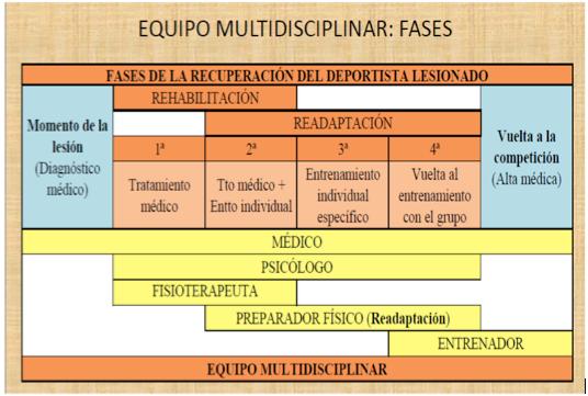 Fases del Trabajo en Equipo Multidisciplinar