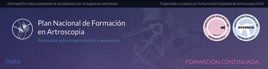 El Dr Bernaldez participara como Profesor dentro del prestigioso Plan Nacional de Formacion en Artroscopia