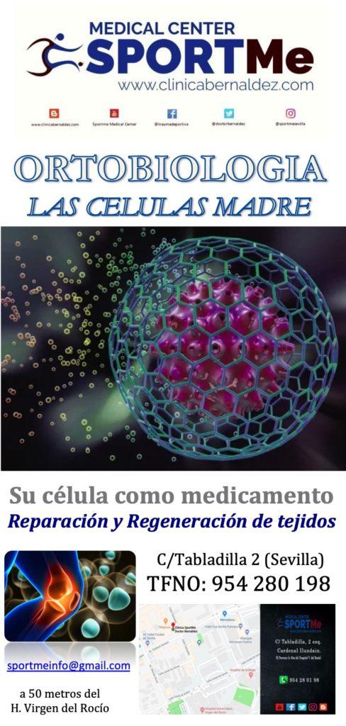 La Ortobiología. Usar la célula como medicamento propio