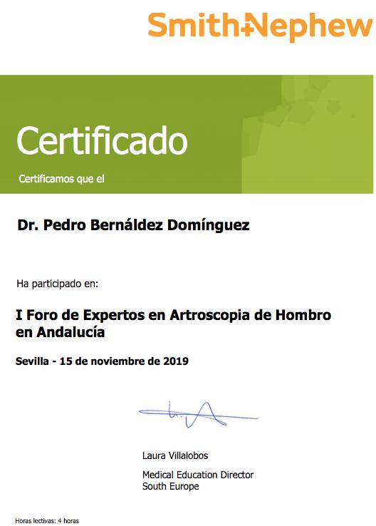 CERTIFICADO PARTICIPACION DR BERNALDEZ I FORO EXPERTOS ARTROSCOPIA DE HOMBRO ANDALUCIA